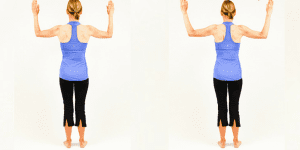 Blog - Standing W Scapular Retraction